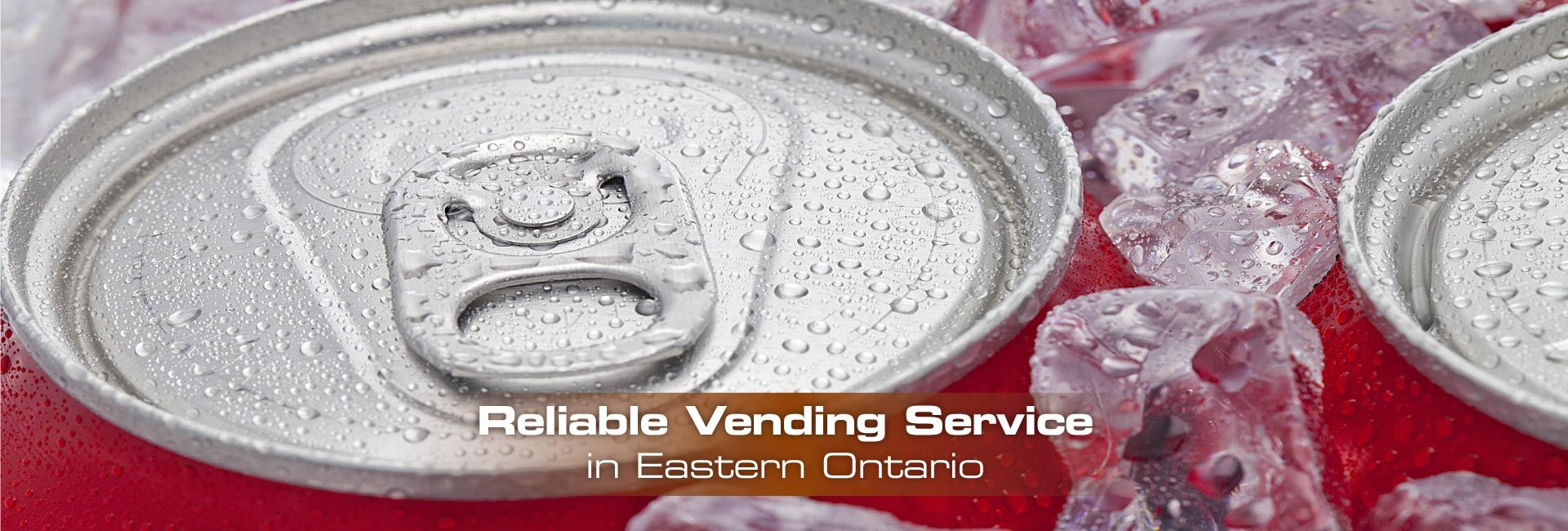 Reliable Vending Service in Eastern Ontario | Basket of ripe fruits on the table